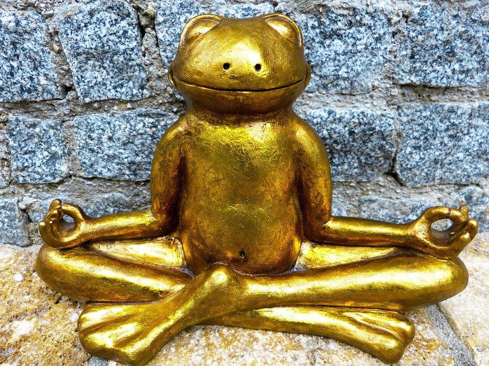 Meditierender Goldfroscsh free pixabay