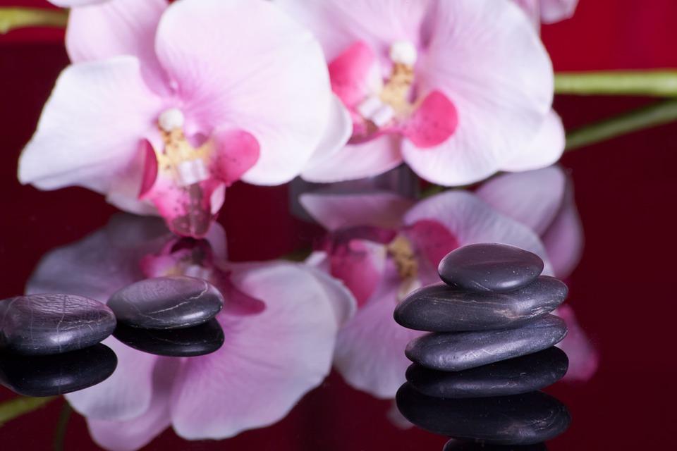 Wellness STeine und Orchidee lizenzfrei pixaby
